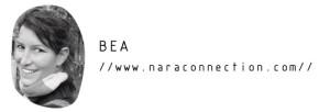 El blog de Nara Connection