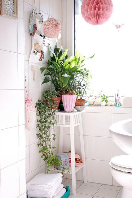 dta decoratualma plantas de interior baño
