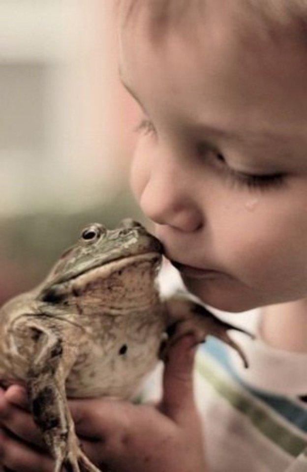 besar a una rana