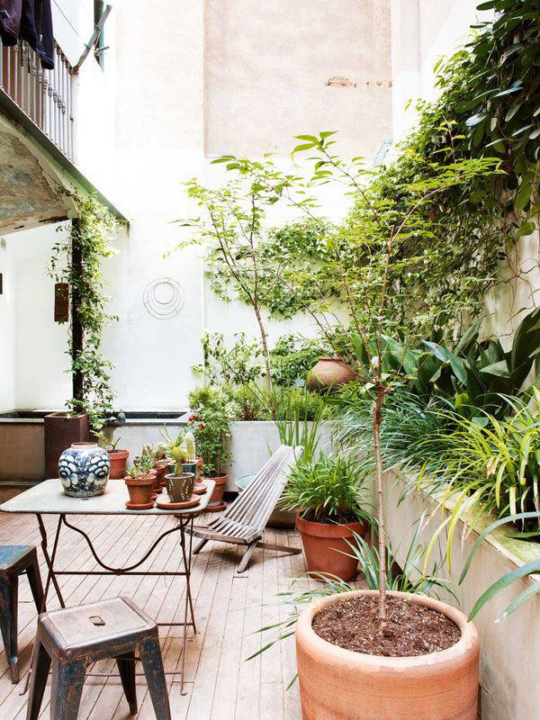 Patio interior con plantas decoracion decoratualma dta