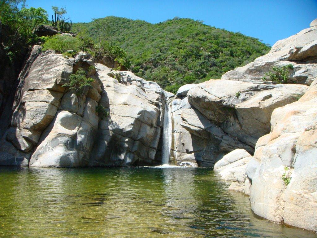 cañon,agua,roca,verde