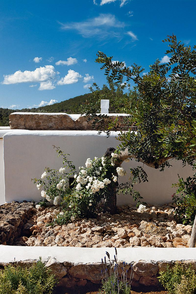 casa,blanca,flores