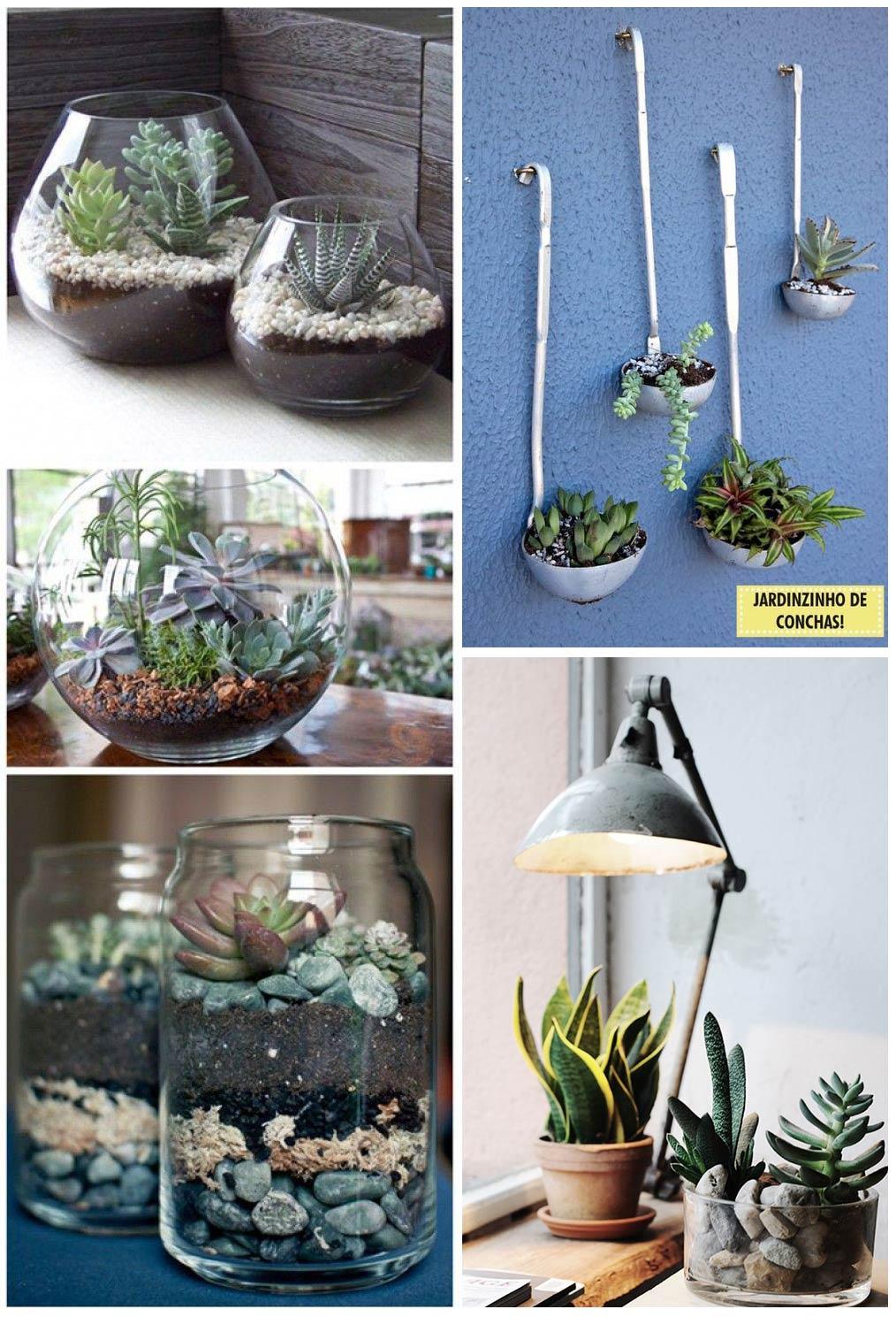 Compo-Decoratualma-suculentas-plantas-interior-inspiracion-DTA-decoracion