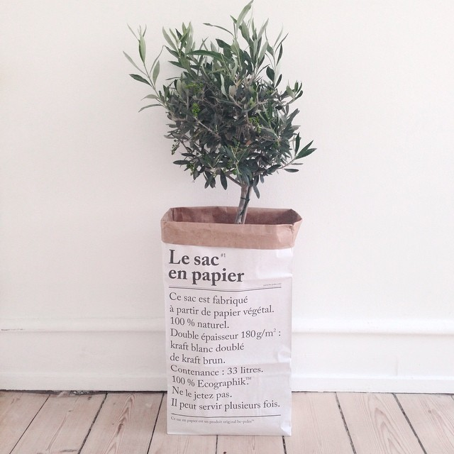Le sac en papier macetero decoratualma