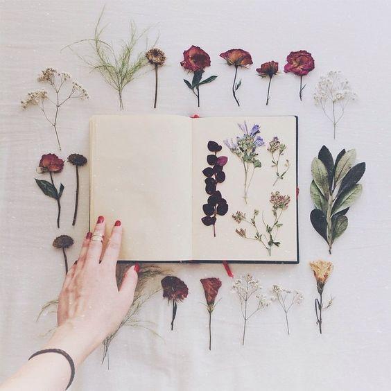 flores_libro