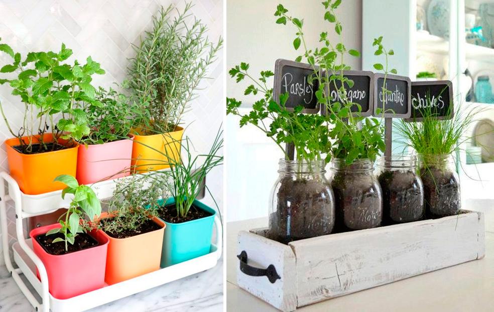 Tu propio huerto en casa con estos kits decoratualma - Pequeno huerto en casa ...