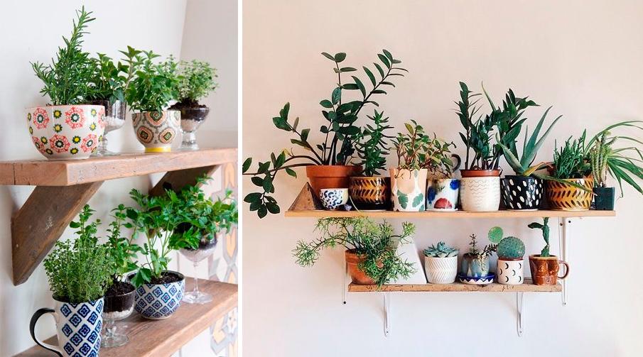 Tu propio huerto en casa con estos kits decoratualma - Tu huerto en casa ...